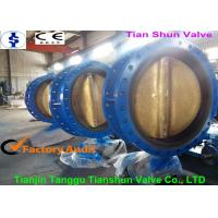 China Concentric Actuated Double Flanged Butterfly Valve Worm Gear Operated With Pin on sale