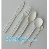 China biodegradable meat tray, disposable plate deli tray, biodegradable breakfast tray, Biodegradable Disposable Food Tray on sale