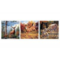Wholesale Custom 16x16 Inches 3d Lenticular Photo Flowers & Animals Mounted Wall Art Print from china suppliers