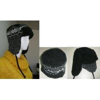 Wholesale Knitted Hat (Sfy-H5-02) from china suppliers