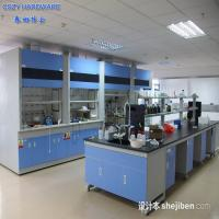 Wholesale Customized Functional simple chemistry laboratory fume hood equipment furniture cupboards from china suppliers