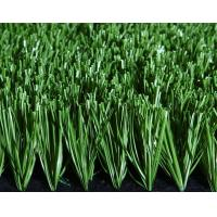 China Green Artificial Grass For Football Field With PP + Net Cloth Backing on sale