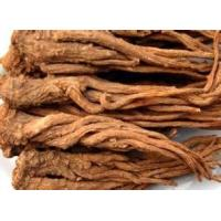 Wholesale natural herbal medicinal and edible plant TCMs Angelica Astragalus from china suppliers