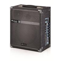 Wholesale Wireless Microphone Portable PA Speaker System / Active Outdoor Speakers from china suppliers