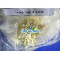 Wholesale Trenbolone Acetate Trenbolone Powder Tren Acetate 10161-34-9 For Big Muscle Growing from china suppliers