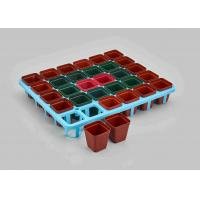 Wholesale SQUARE More meat small black plastic flower POTS small box from china suppliers