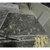 Wholesale Butterfly Green Cleaning Granite Countertops Surface Polished Design from china suppliers