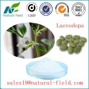 China GMP factory mucuna pruriens extract levodopa(l-dopa) l-dopa powder CAS:59-92-7 on sale