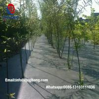 Wholesale garden ground cover fabric / weed barrier mat / plastic pp anti weed agro weed control from china suppliers