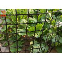 Wholesale Heavy Duty Garden Fence , Garden Mesh Netting , Black Color , HDPE Materials , 50 CM High from china suppliers