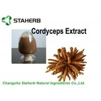 Buy cheap Antibacterial Cordyceps Extract 10%-40% Polysaccharides Powder By HPLC from wholesalers