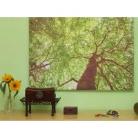 Wholesale 4 colour wide format digital photo canvas printing for art show / display from china suppliers