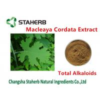 Buy cheap Antibacterial Plant Macleaya Cordata Extract Total Alkaloids 20%-60% Brown Color from wholesalers