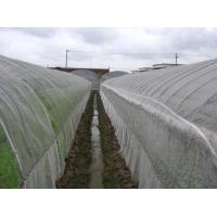 Wholesale Anti Insect Net 50x35mesh,growing and agriculture using,greenhouse using  50-140g/m2  0.5m-6m width   black,white from china suppliers