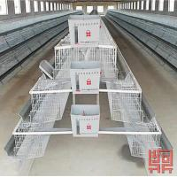 Wholesale 3 Tiers of 120 Birds Layer Cage from china suppliers