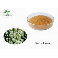 Wholesale Natural Pure Yucca Plant Extract Powder 50% Sarsaponin for Odor Removing from china suppliers