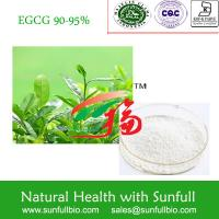 Wholesale Green Tea Extract, 100% Natural , EGCG, EC, Epicatechin,organic from china suppliers