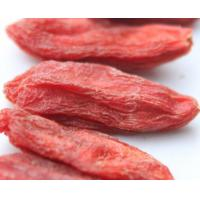 China Natural Goji Berry / Barbary Wolfberry Fruit / Lycium Berry Ningxia Dried Fruit on sale
