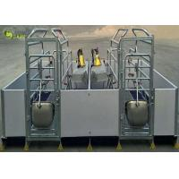 Wholesale Welding Pig Farrowing Crate , Turn Around Farrowing Crates PVC Fence from china suppliers