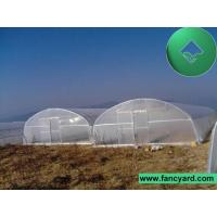 Sun House, Warm Greenhouse, Sun Greenhouse, Hot Greenhouse