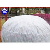 Spunbond Winter Crop / Plant Protection Fabric , Non Woven Fabric Used In Agriculture