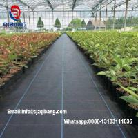 Wholesale Black or Green agricultural pp weed control mat/ ground cover Biodegradable Polypropylene Nonwoven Mat Weed Control Land from china suppliers