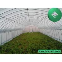 Roll-Up Greenhouse, Single Span Greenhouse, Big Greenhouse