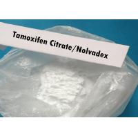 Nolvadex Powder Tamoxifen Citrate CAS 54965-24-1 Anti Estrogen Bodybuilding