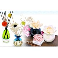 Buy cheap Sola Wood Flower for perfume diffuser from Wholesalers