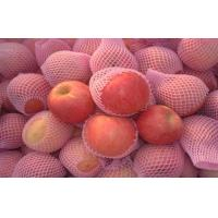 China Fuji Apple Crisp , Fresh Red Fuji Apple Nutritional Value For Health on sale