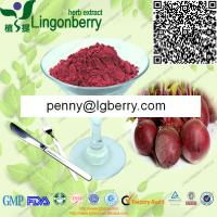 China Red Beet Juice Powder on sale