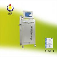 Buy cheap GS8.1 Vacuum Cavitation Fast Slimming Beauty Equipment from wholesalers