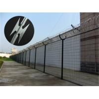 Prison Anti Climb Fencing / Security Steel Fence With Razor Barbed Wire