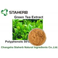 Wholesale Yellow Brown Powder Natural Plant Extracts Green Tea Extract Polyphenols 50% By HPLC from china suppliers