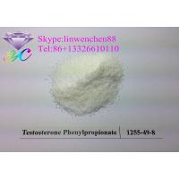 Wholesale Testosterone Phenylpropionate Bodybuilding Steroid Testosterone Powder white powder Shipping in North America from china suppliers