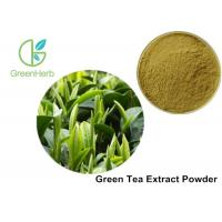 Health Product 98% Polyphenol Pure Green Tea Extract Catechin 70% / EGCG 50%