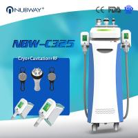Wholesale 2 Cryo handles work at the same time optional Cryolipolysis cool body sculpting machine with 5 handles from china suppliers