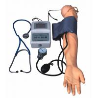China BP Measurement Arm With Exercise Blood Pressure model For Medical Colleges And Schools on sale