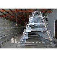 Wholesale 5 Teris of 200 Birds Layer Cage from china suppliers