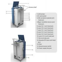 Wholesale Cavitation RF Laser Lipo Machine / Weight Loss Skin Tightening Machine 650nm LS650 from china suppliers