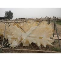 China cattle  leather for dog chews gelatin on sale