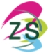 China Shenzhen Zhisheng Technology Co., Ltd logo