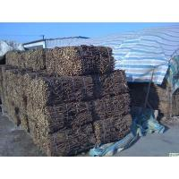 Wholesale natural bulk herbs exported TCMs glycyrrhiza liquorice root from china suppliers