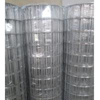 """Wholesale Hot-dipped Galvanized Welded Wire Mesh   3""""X2"""",2.7mm,1.2-1.8m from china suppliers"""