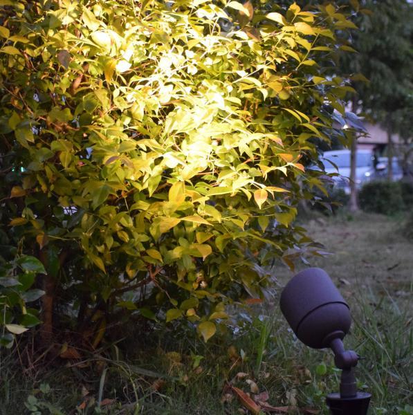 Garden Led Spike Light 6w Led Outdoor Flood Light For Tree