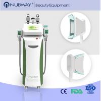 Wholesale cryolipolysis cool body sculpting machine / fat freeze cryolipolysis slimming machine from china suppliers