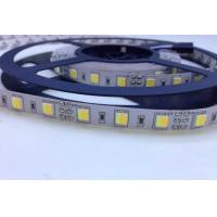 Wholesale SMD 5052 CW+WW  2-in-1 Dual White Tunable White Dynamic White LED Strip from china suppliers