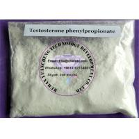 Wholesale Steroids Testosterone Phenylpropionate effect For Bulking  Muscle Mass from china suppliers