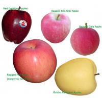 Wholesale Red Fuji Apple from china suppliers