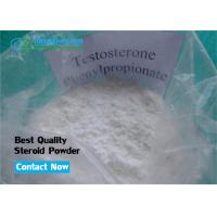 Wholesale Sustanon Agent Cutting Steroid Testosterone Phenylpropionate Powder for Muscle Strength from china suppliers
